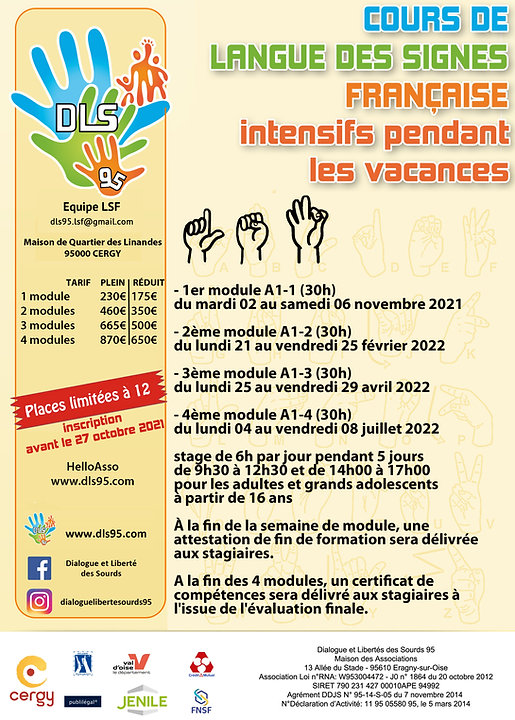 Cours intensifs vacances LSF.jpg