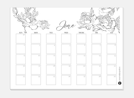 Monthly Printable Planner June 2019