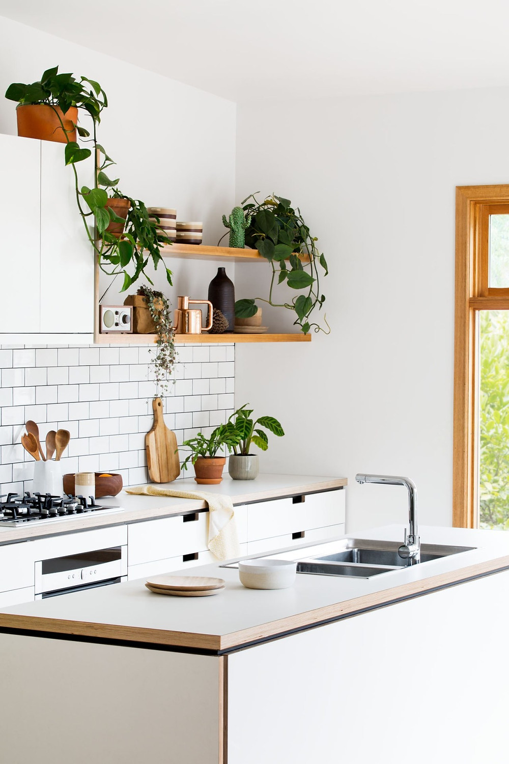 Organised kitchen with plants - Homefulness