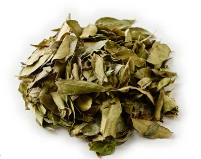 Organic Curry Leaves - 100g
