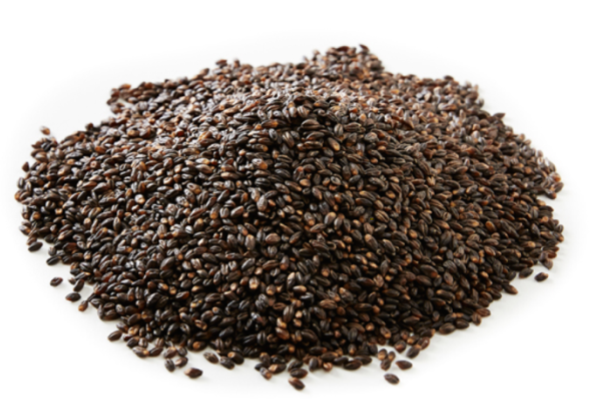Black Barley - 500g
