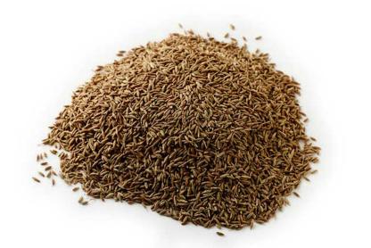 Organic Cumin Seeds - 100g