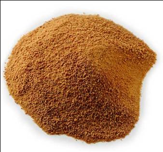 Organic Coconut Sugar - 250g