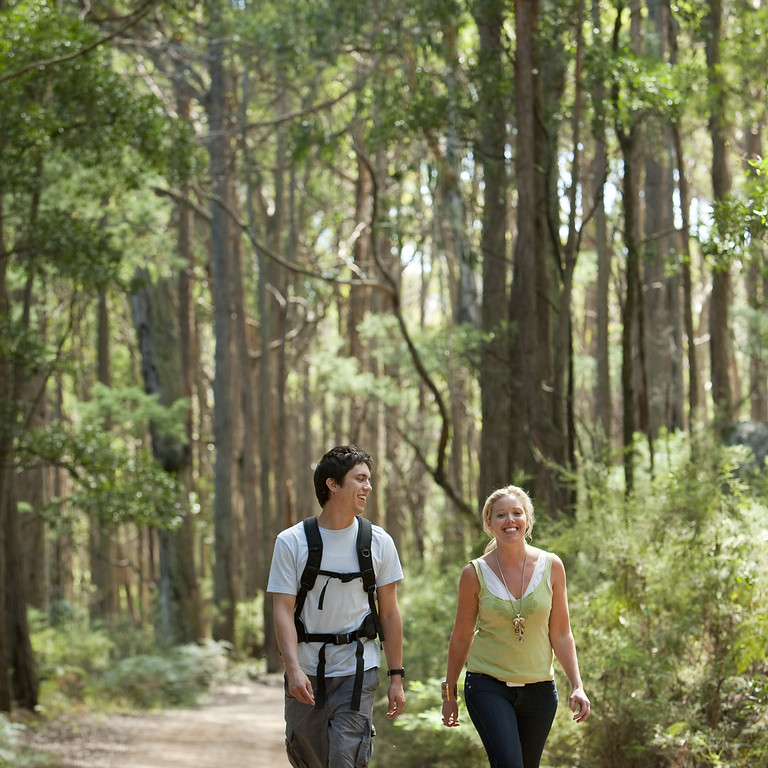 Goldfields Track Wombat Forest Medium Walks / 2 nights