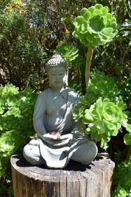 Rocklyn Yoga Ashram