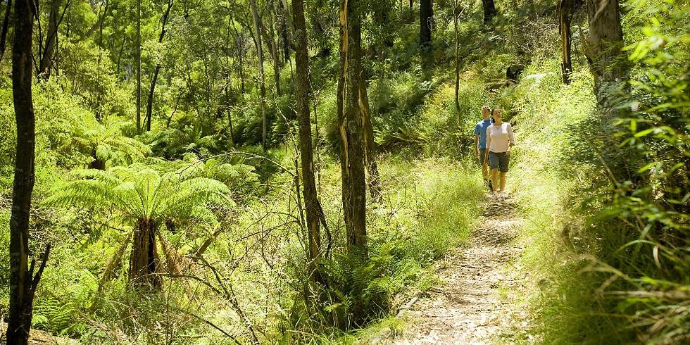 Wombat Forest Wallaby Track Three Short Walks / 1 night