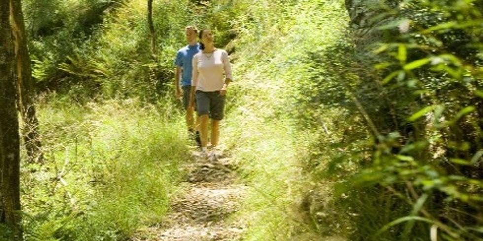 Goldfields Wallaby Track / Wombat Forest Medium Walks / 1 night
