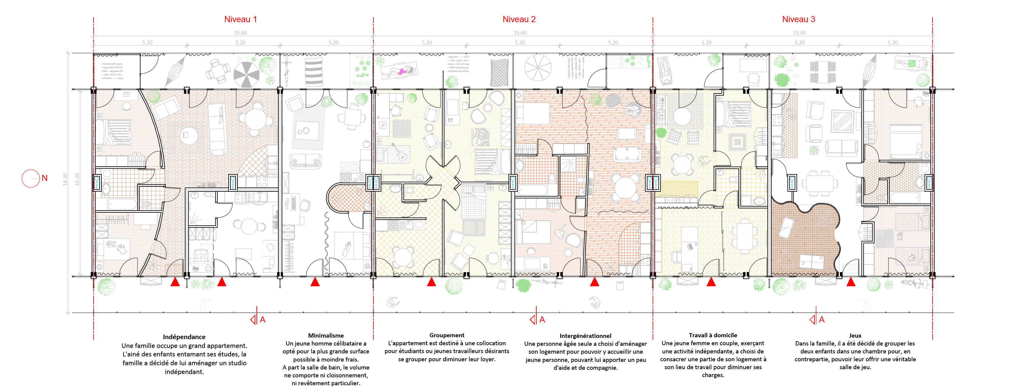 Habitat évolutif - plan