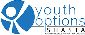 Youth Options Logo.jpg