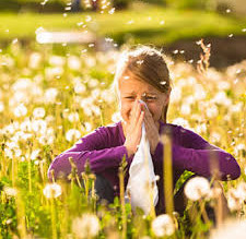 Simple Support For Allergy Symptoms