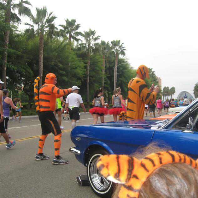 2014 Disney Marathon (14).JPG