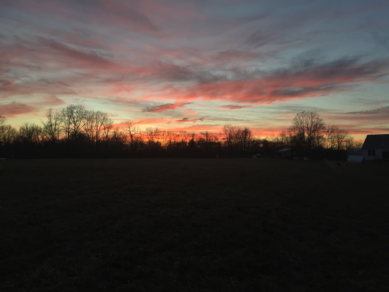 Woods Edge Farm Sunset
