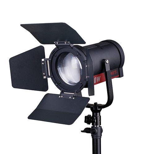 FL-C60D Bi-color Portable LED Spot Light