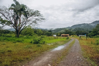 Ya se cuenta con predio para construir el centro de bienestar animal en villavicencio