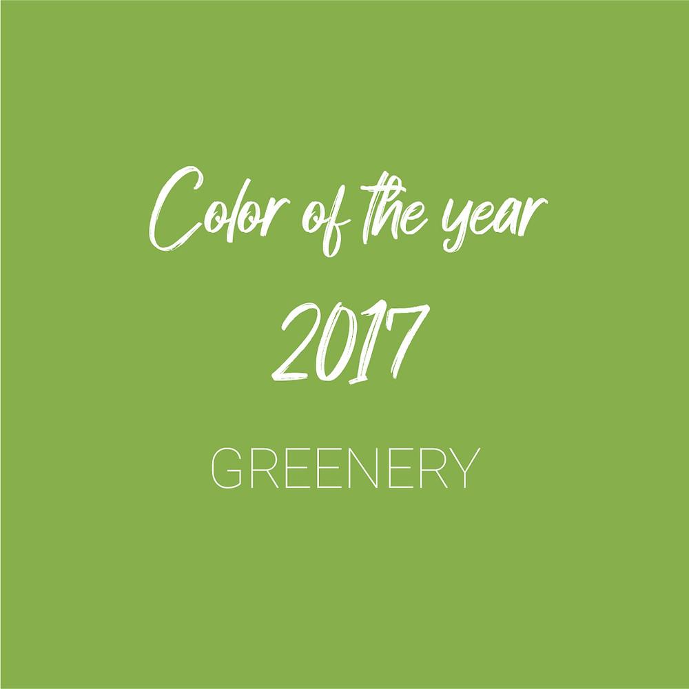 צבעי השנה, עיצוב גרפי, עיצוב פנים, בחירת צבעים, גרפיקה, איור, מיתוג