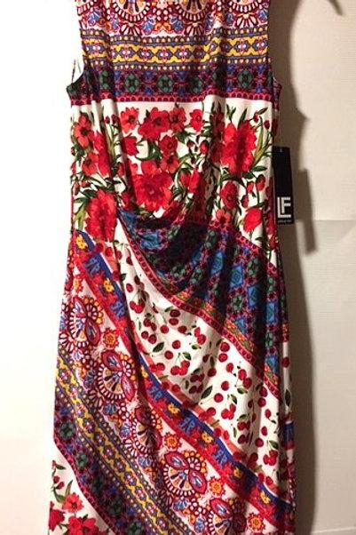 Ladies Size 8 Multi Color Poppy Sleeveless Dress