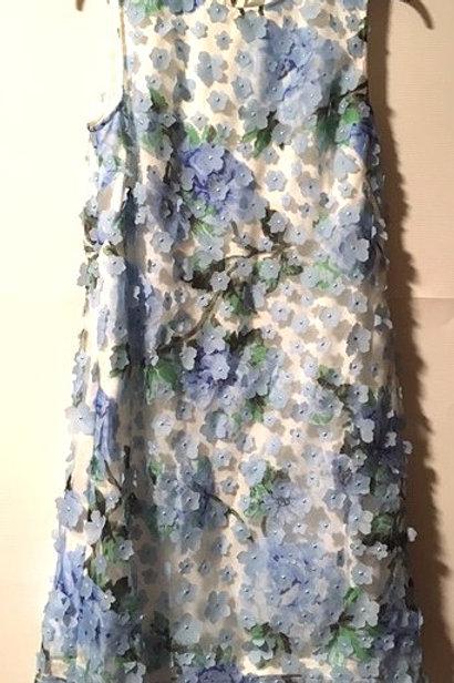 Ladies Size 10 Blue Floral Sleeveless Dress
