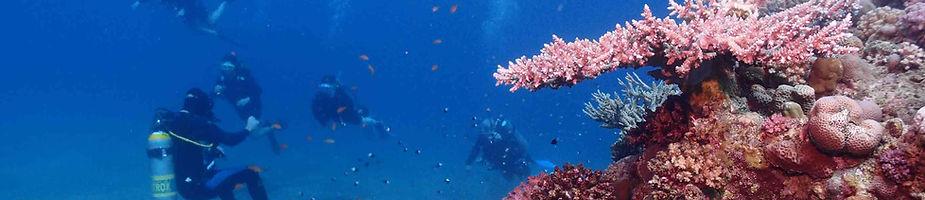 Prova på dykning ed kompisrna