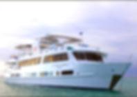 M/V Humboldt Explorer, M/V Galapagos Explorer, Dykresa Galapagos, Liveaboard Galapagos, Liveaboards Galapagos, Open Water Diver Galapagos, Dykcert Galapagos, Dykcertifikat Galapagos, Dykskola Galapagos, Dykcenter Galapagos, Dykning Galapagos, Dyksemester Galapagos