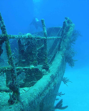 diving_1655734_Opt.jpg