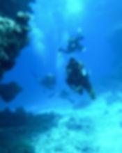 diving-813028_5.jpg