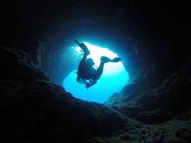 Dyksemester med dykkurs