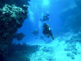 Provdyk företag. Prova på dyk företag, Try dives, Test Dives