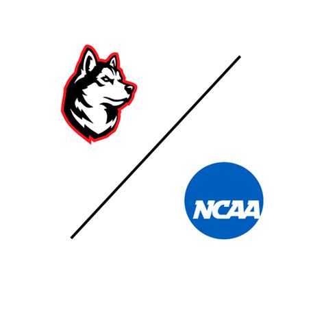 Whitehead makes NCAA DI commitment at Northeastern University