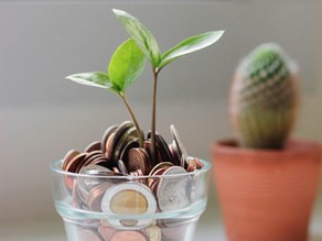 How Reducing Your Waste can Improve Your Finances and Save You Money