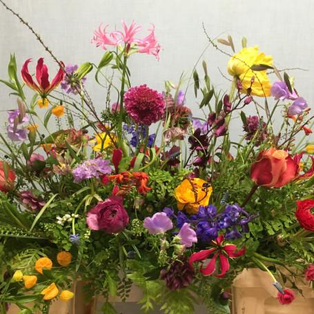 Winterstuk met eerste voorjaarsbloemen