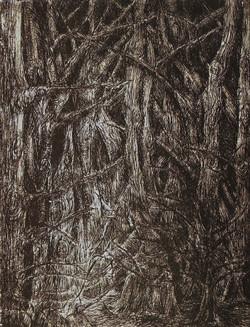 Dante nella Selva Oscura