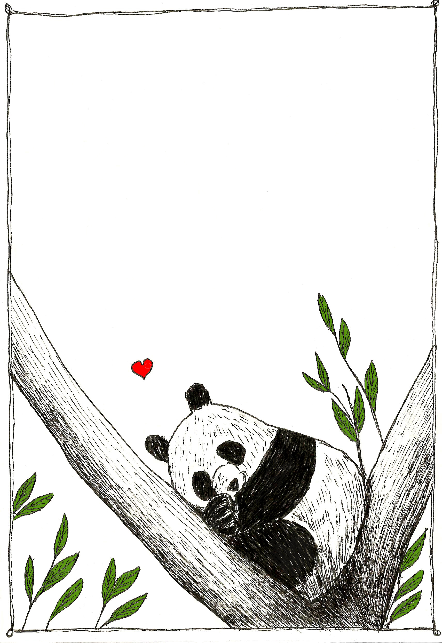 panda che dorme