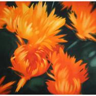 OrangeFlowers.jpg