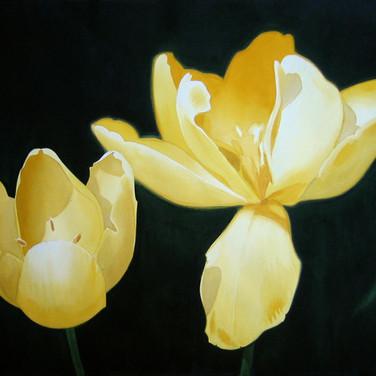 TulipsLo.jpg