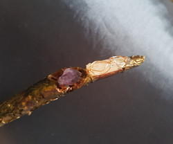 Faerie Wand point