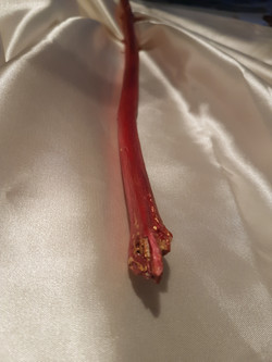 Red Dragon Wand, grounding position