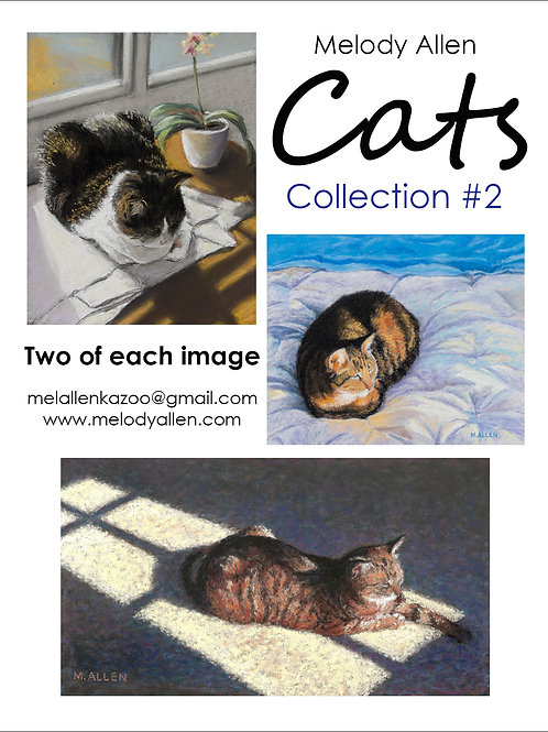 Cats #2 note cards