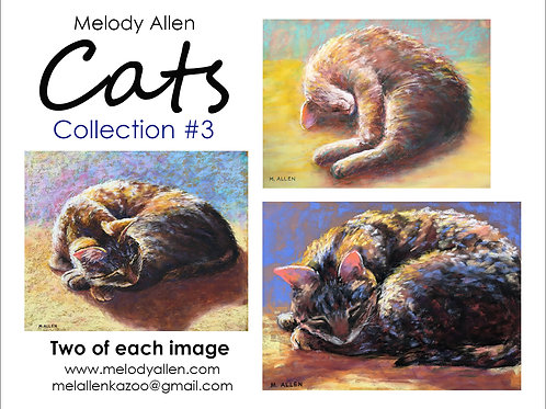 Cats #3 note cards