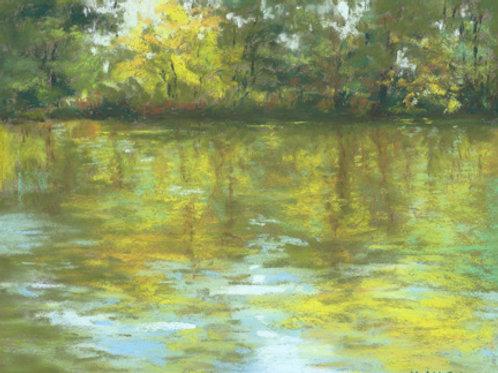Kalamazoo River Reflections