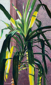 Yucca (for web).jpg