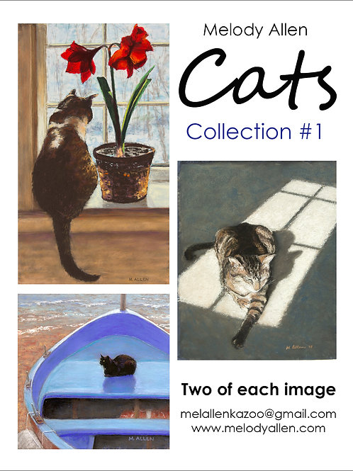 Cats #1 note cards