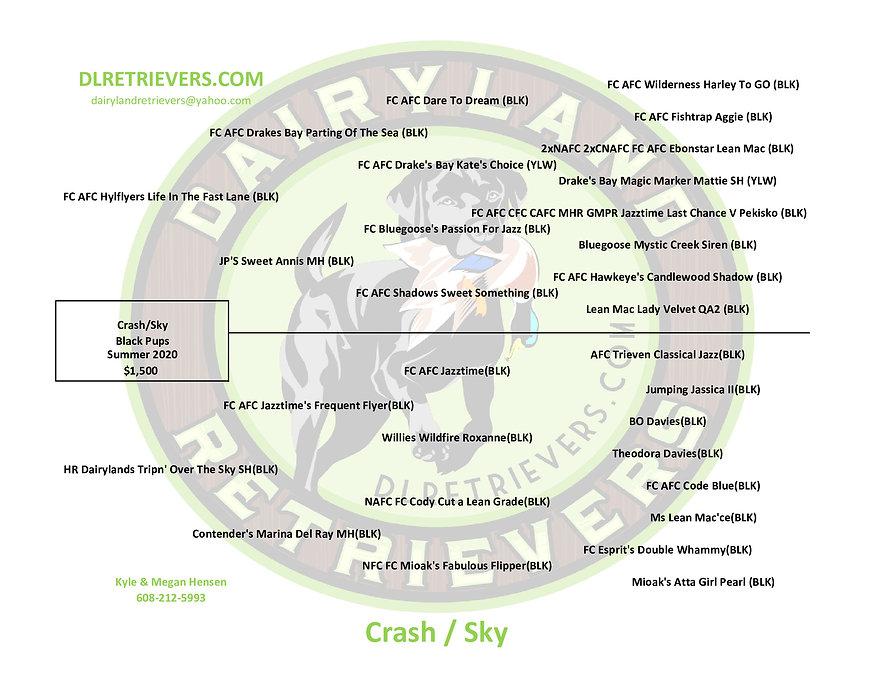 Crash-SKY.jpg