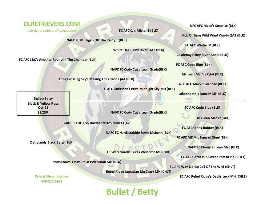 Bullet-Betty-page-001.jpg