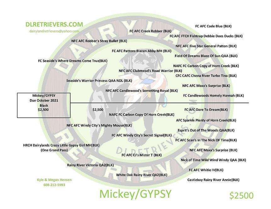 Mickey Gypsy-page-001.jpg