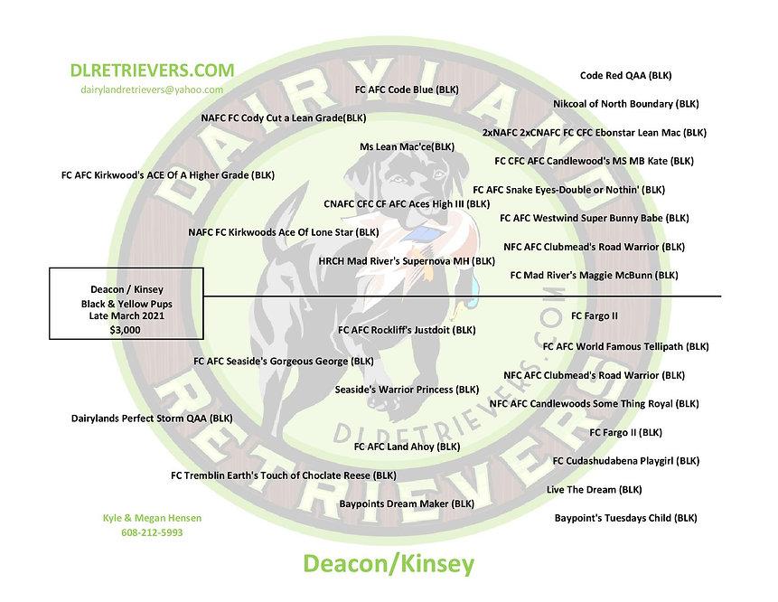 Deacon Kinsey-page-001.jpg