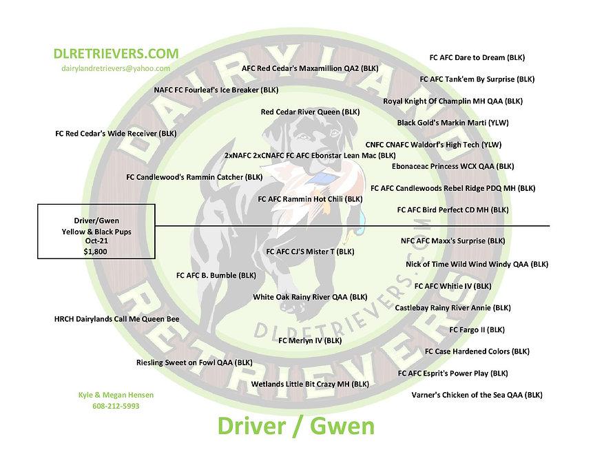 Driver Gwen-page-001.jpg