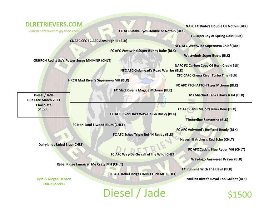 Diesel Jade-page-001.jpg
