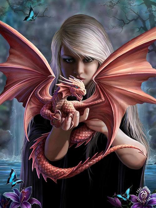 Dragonkin Postcard