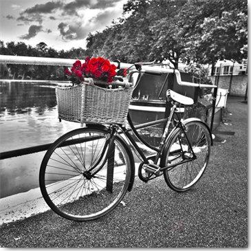 Plexi Collection - Romantic Roses I