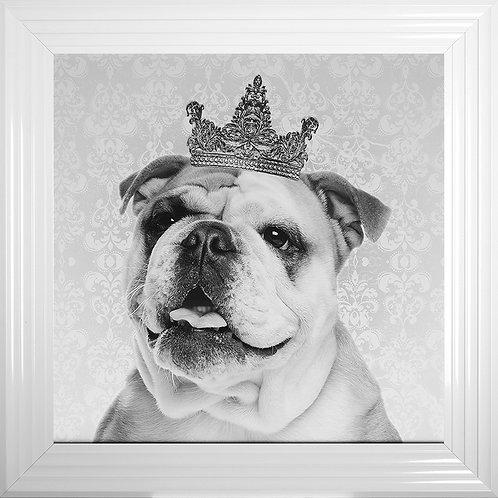 Bulldog with Crown Liquid Resin & Swarovski Crystals Framed Artwork - 75x75cm